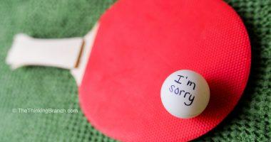 mom_blog_apology_ping_pong