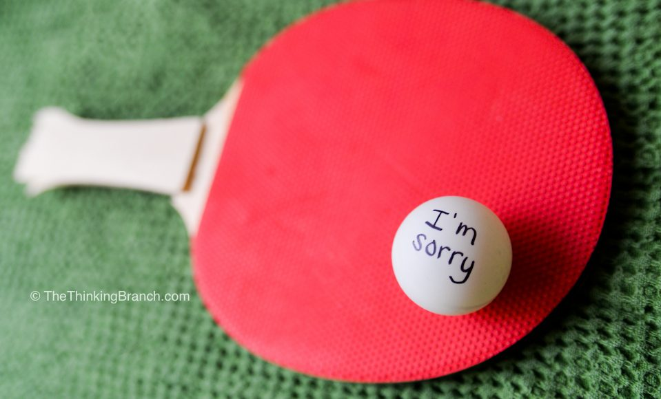 mom_blog_apology_ping_pong